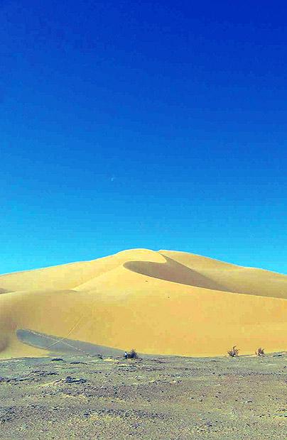 Nie ma, nie ma wody na pustyni, a wielbłądy nie chcą dalej iść…