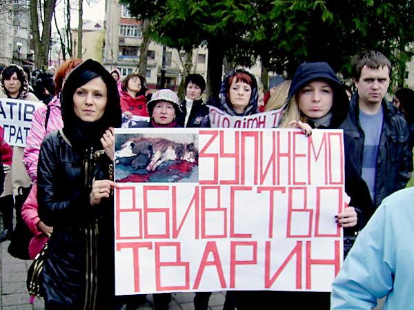Protest przeciwko zabijaniu zwierząt