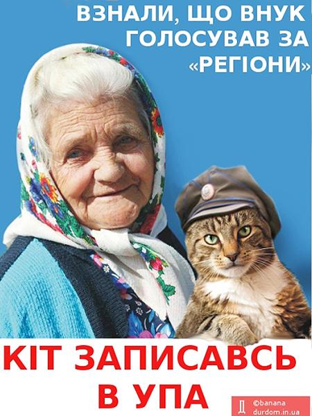 Straszna historia kota i jego pani