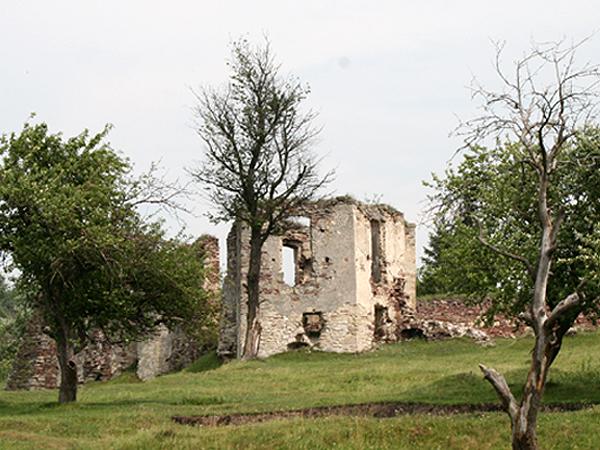 Ruiny twierdzy w Podzameczku (Fot. Sabina Różycka)