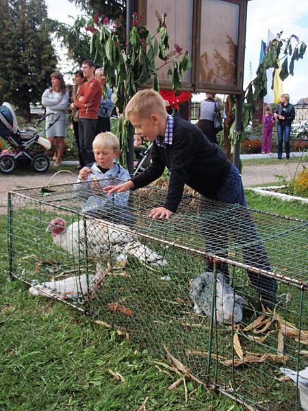 Dożynkowe atrakcje dla dzieci (Fot. Eugeniusz Sało)