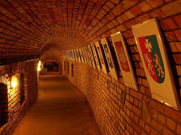 Rzeszowska Trasa Podziemna wzorem dla Lwowa