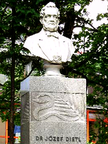 Pomnik prof. Józefa Dietla, Krynica Zdrój (Fot. colourfully.fotek.pl)