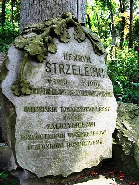 Nagrobek Henryka Strzeleckiego (Fot. Beata Kost)