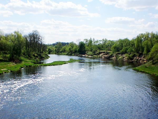 Widok rzeki Niewiaży/Nevëzis (Fot. commons.wikimedia.org)