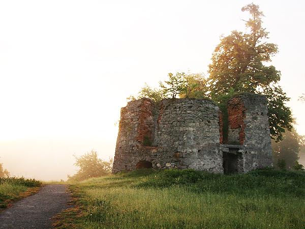 Wieża wartownicza, która dzięki naszym składkom zostanie oczyszczona od roślin (Fot. Dmytro Antoniuk)