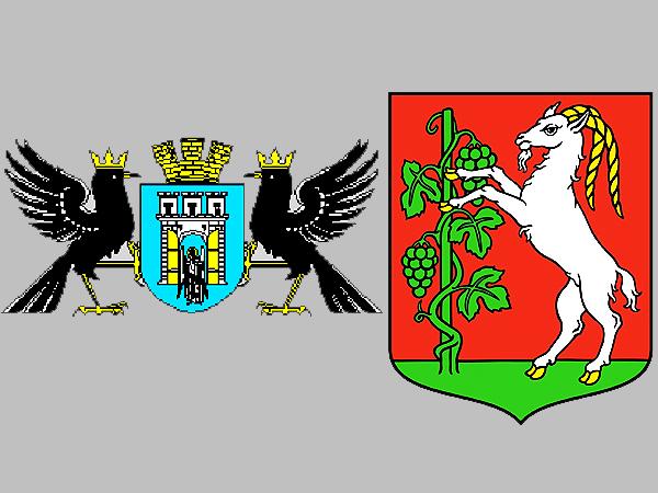 Wspólne cele Iwano-Frankiwska i Lublina