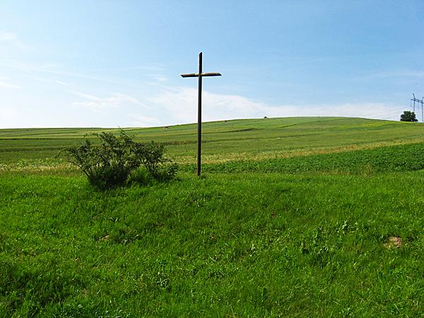 Całkowicie zniszczony cmentarz, z którego wyróżnia się niewielki krzyż (Fot. dytiatyn.pl)