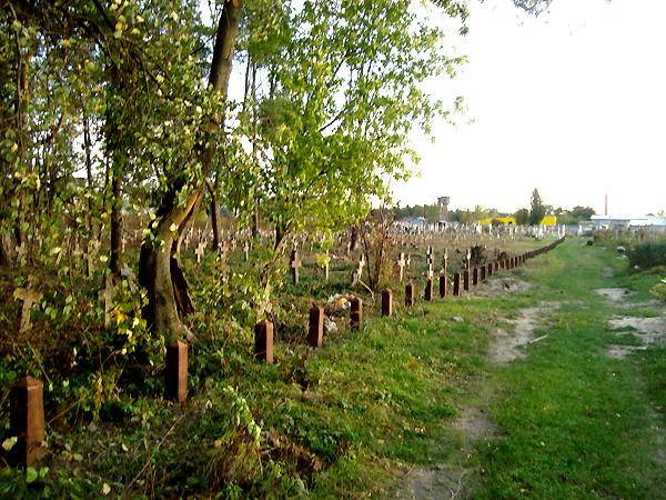 Porządkowanie cmentarza wojskowego w Brodach