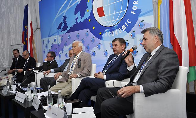 Wypromować Karpaty na forum UE