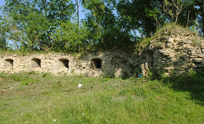 Kto i kiedy zbudował zamek w Czernelicy?