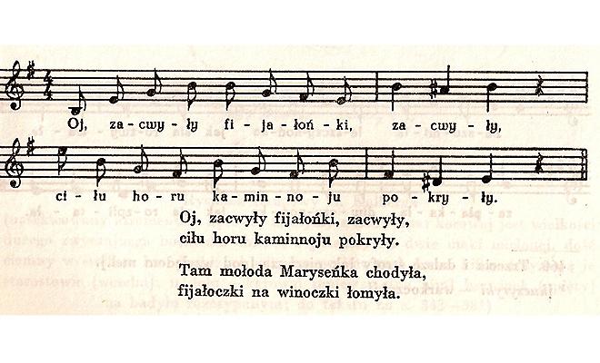 """""""Oj zacwiły fijałońki"""" – przykład ukraińskiej pieśni zanotowanej przez Oskara Kolberga w okolicach Brodów"""