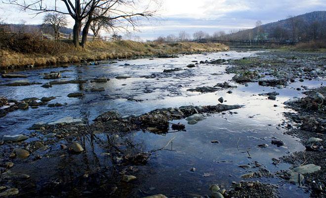 Rzeka Łużanka w Witwicy (Fot. Oleg Witwicki)