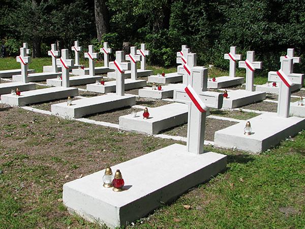 Cmentarzyk poległych pod Zadwórzem (Fot. Julia Łokietko)