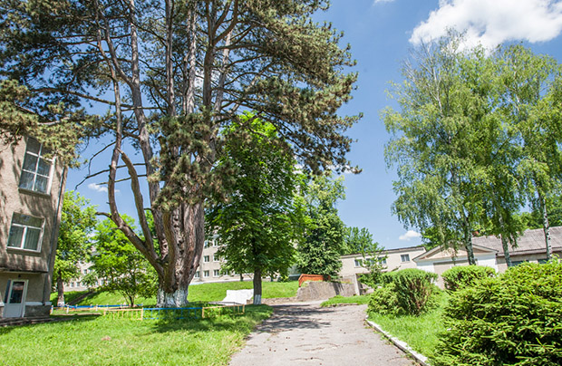 Strusów – jedna z najpiękniejszych wsi Ukrainy