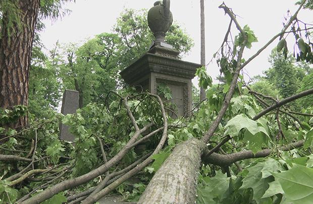Skutki burzy na Cmentarzu Łyczakowskim we Lwowie